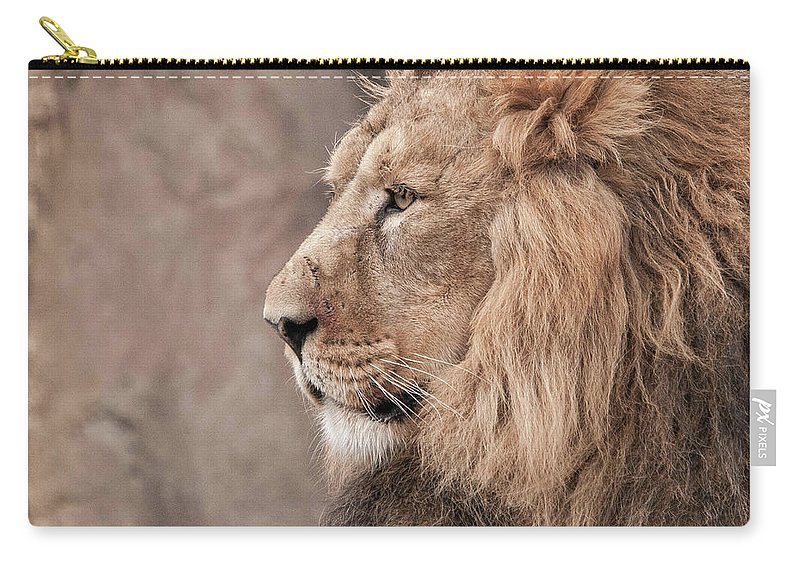 'asiatic Lion' Lion Carry-all Pouch featuring the photograph Male Lion by Natasha Balletta