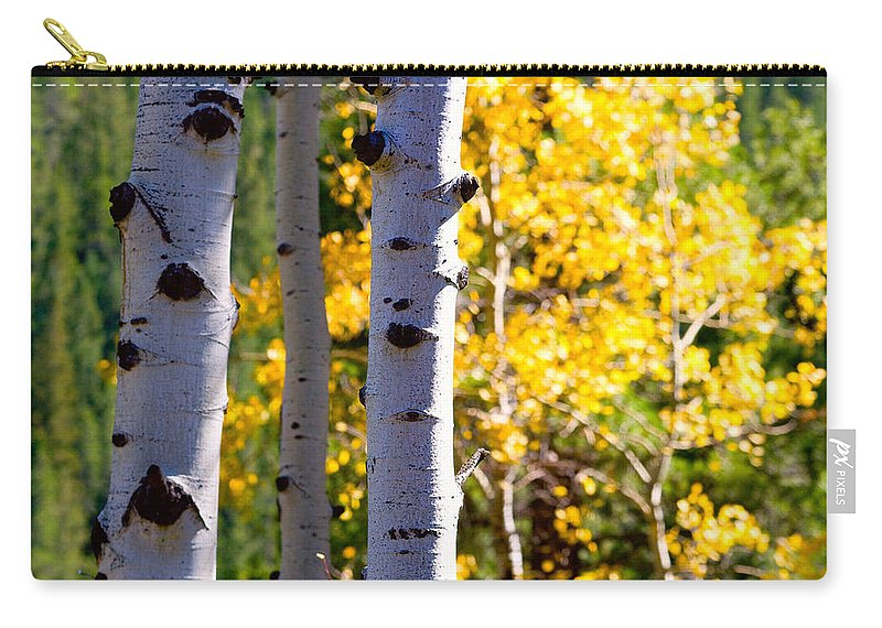 Aspens Carry-all Pouch featuring the photograph Aspen Color by James BO Insogna