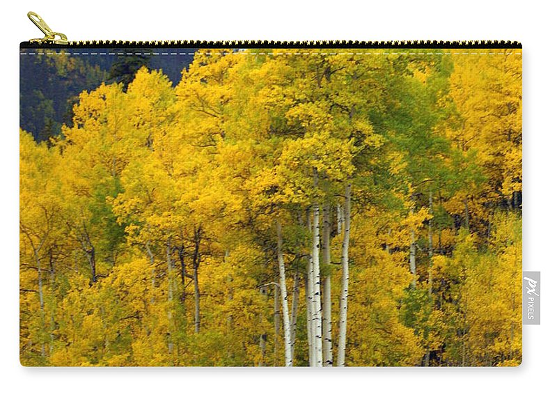 Fall Colors Carry-all Pouch featuring the photograph Aspen Fall 3 by Marty Koch
