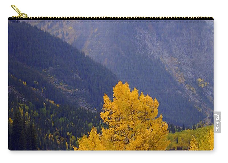 Fall Colors Carry-all Pouch featuring the photograph Aspen Fall 4 by Marty Koch