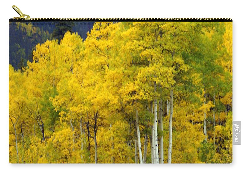 Fall Colors Carry-all Pouch featuring the photograph Aspen Fall by Marty Koch