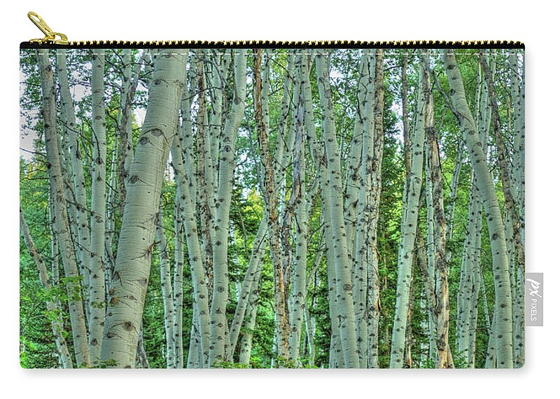 Hdr Carry-all Pouch featuring the photograph Aspen Forest by Linda Weyers