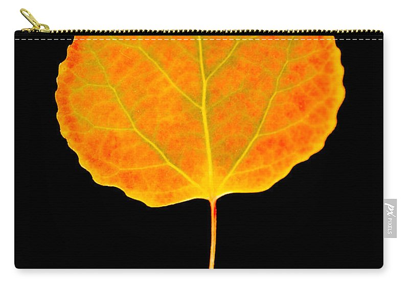 Leaf Carry-all Pouch featuring the photograph Aspen Leaf by Marilyn Hunt