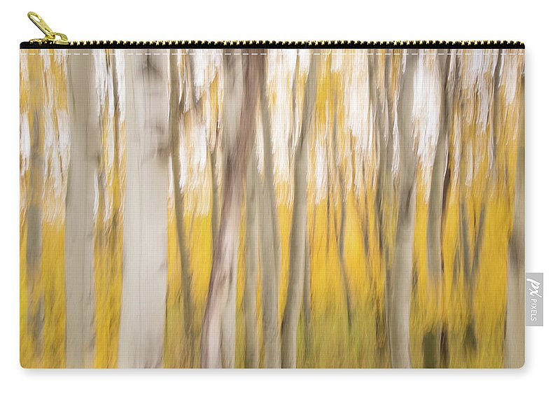 Aspen Carry-all Pouch featuring the photograph Aspens by Alex Lapidus