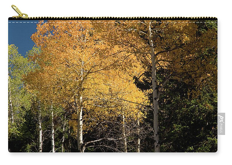 Grand Teton Carry-all Pouch featuring the photograph Aspens And Sky by Steve Stuller