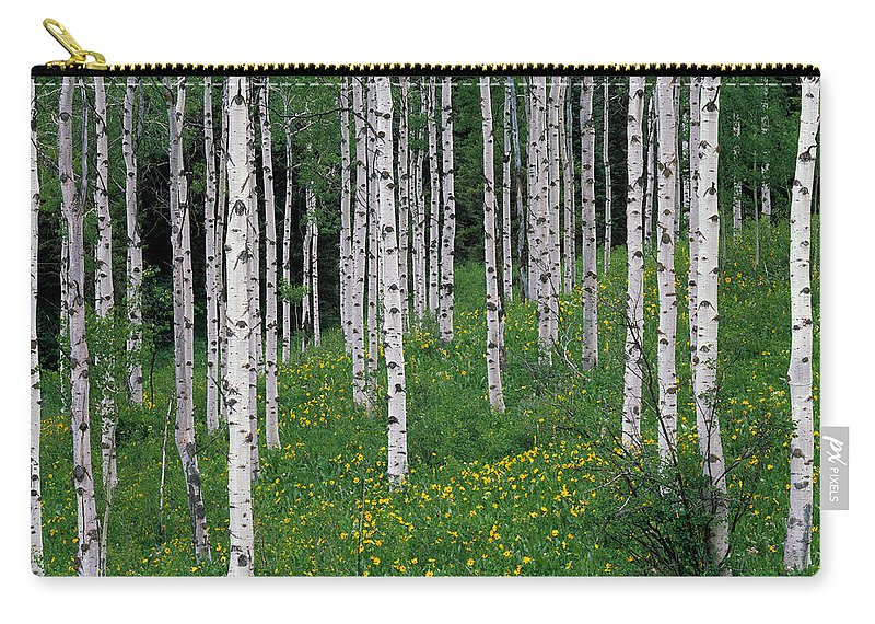 Idaho Scenics Carry-all Pouch featuring the photograph Aspens In Spring by Leland D Howard