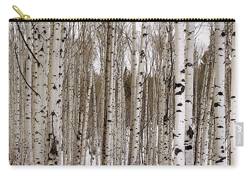 Aspen Carry-all Pouch featuring the photograph Aspens In Winter Panorama - Colorado by Brian Harig