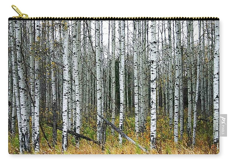 Aspens Carry-all Pouch featuring the photograph Aspens by Nelson Strong