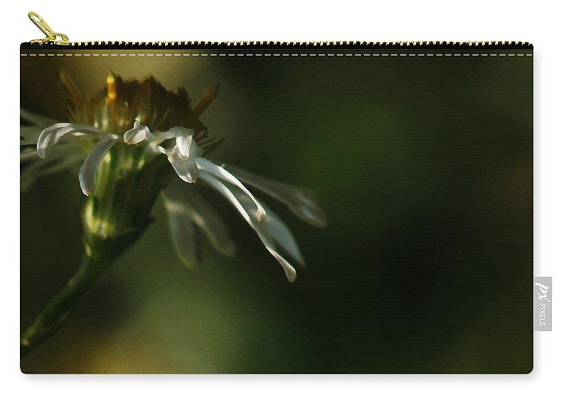 Flower Carry-all Pouch featuring the photograph Aster's Peripheral Ray by Linda Shafer