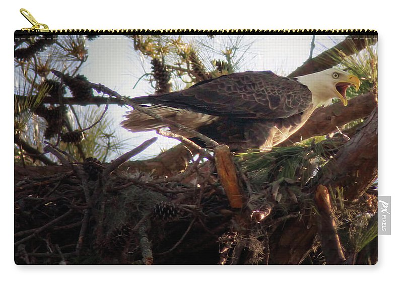 Bald Eagle Carry-all Pouch featuring the photograph At The Nest by Phill Doherty