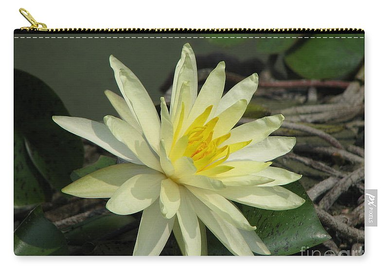 Lilly Carry-all Pouch featuring the photograph At The Pond by Amanda Barcon