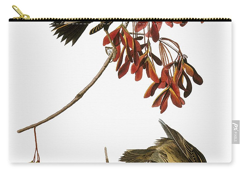 1838 Carry-all Pouch featuring the photograph Audubon: Bobolink by Granger