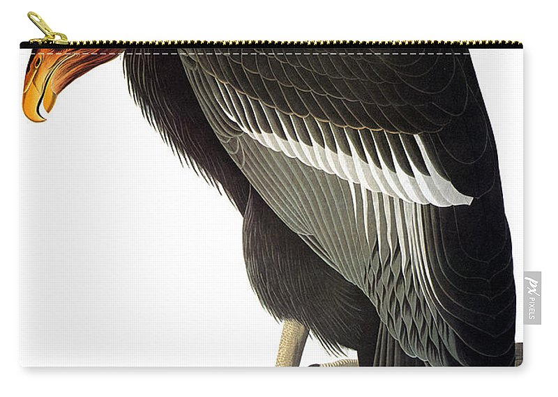 1827 Carry-all Pouch featuring the photograph Audubon: Condor by Granger