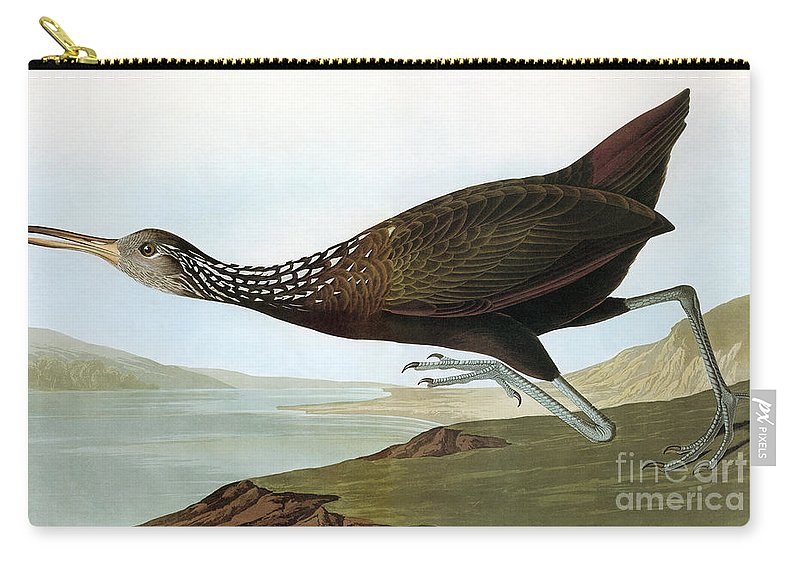 19th Century Carry-all Pouch featuring the photograph Audubon: Limpkin by Granger