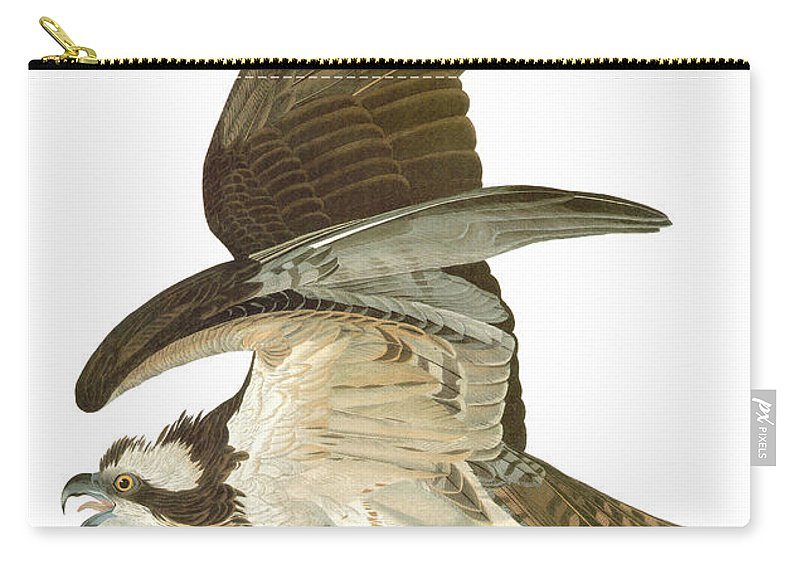 19th Century Carry-all Pouch featuring the photograph Audubon: Osprey by Granger