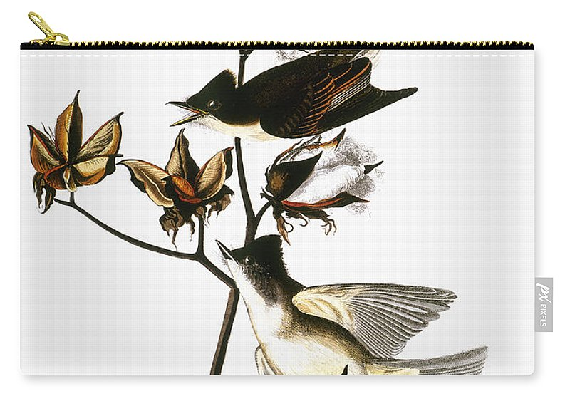 1838 Carry-all Pouch featuring the photograph Audubon: Phoebe by Granger