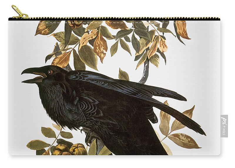 1838 Carry-all Pouch featuring the photograph Audubon: Raven by Granger