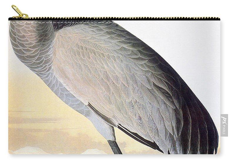 1827 Carry-all Pouch featuring the photograph Audubon Sandhill Crane by John James Audubon