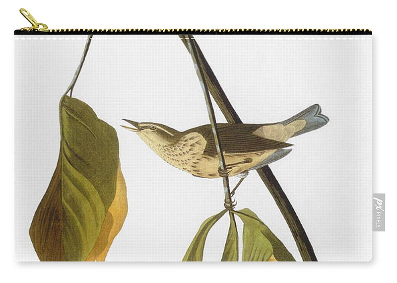 1827 Carry-all Pouch featuring the photograph Audubon: Thrush, 1827 by Granger
