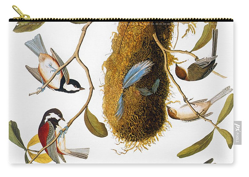 1838 Carry-all Pouch featuring the photograph Audubon: Titmouse by Granger