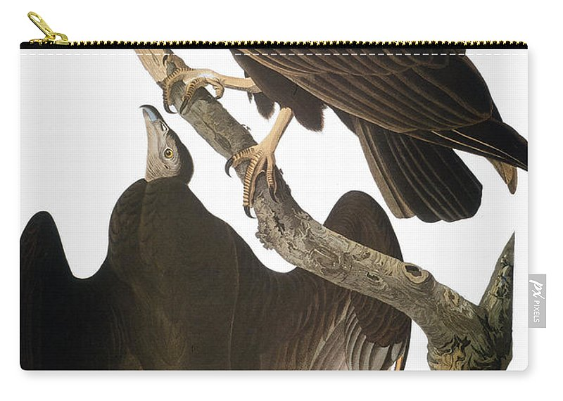 1827 Carry-all Pouch featuring the photograph Audubon: Turkey Vulture by Granger