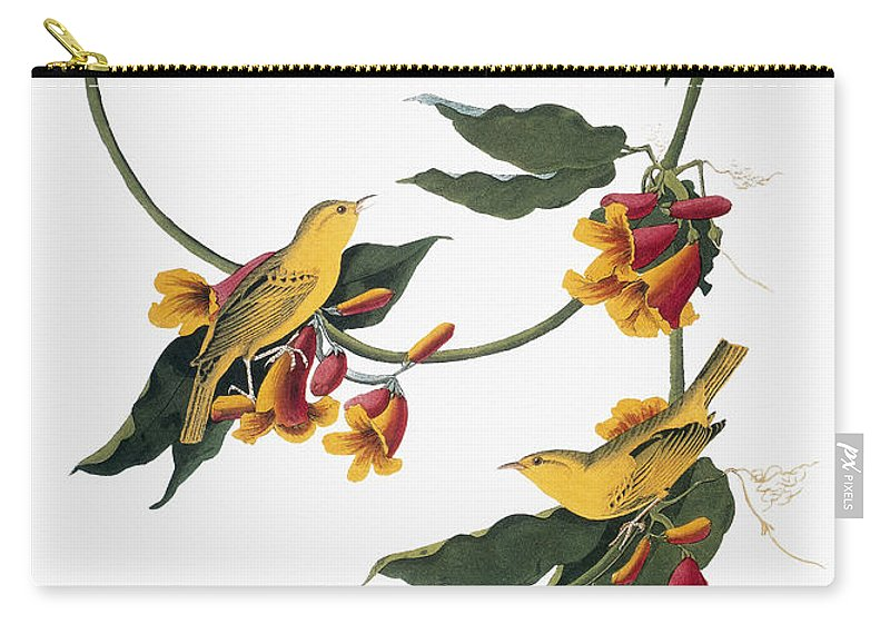 1827 Carry-all Pouch featuring the photograph Audubon: Vireo, 1827-38 by Granger