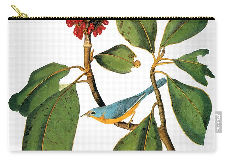 1838 Carry-all Pouch featuring the photograph Audubon: Warbler by Granger