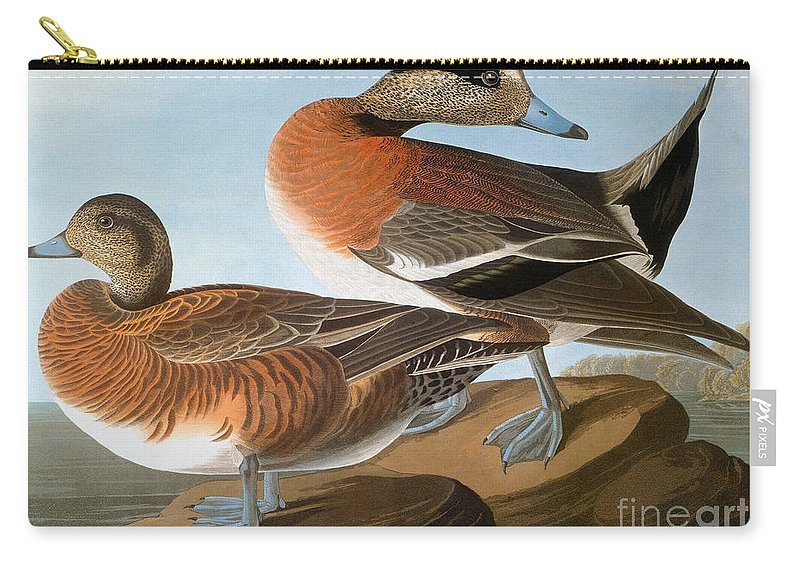 1827 Carry-all Pouch featuring the photograph Audubon: Wigeon, 1827-38 by Granger