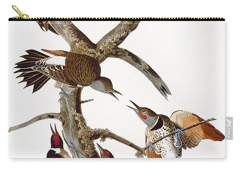 1838 Carry-all Pouch featuring the photograph Audubon: Woodpeckers by Granger