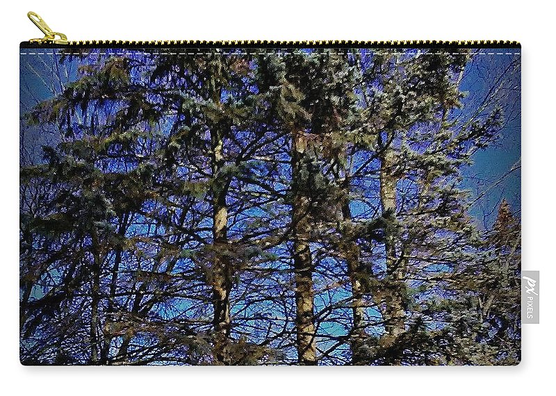 Photography Carry-all Pouch featuring the photograph Authenticity by Frank J Casella