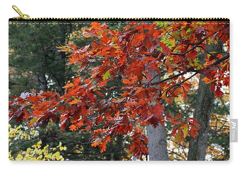 Autumn Carry-all Pouch featuring the photograph Autumn Afternoon by Michiale Schneider