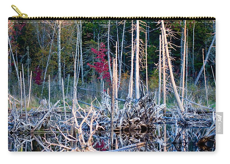 Autumn Carry-all Pouch featuring the photograph Autumn At Moosehead Bog by Brent L Ander