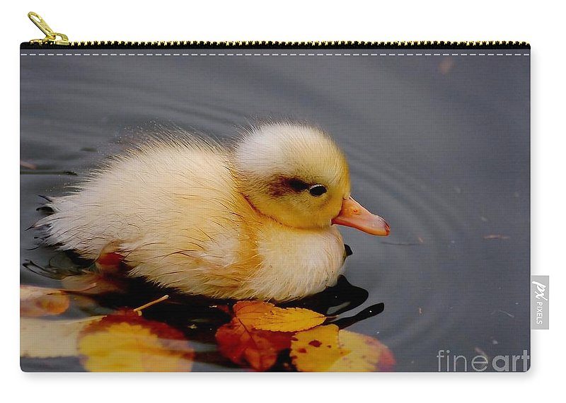 Bird Carry-all Pouch featuring the photograph Autumn Baby by Jacky Gerritsen
