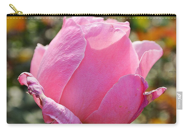 Rose Carry-all Pouch featuring the photograph Autumn Beauty by Felicia Tica