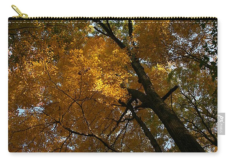 Autumn Fall Trees Orange Landscape Photography Photograph Digital Art Carry-all Pouch featuring the photograph Autumn Canopy by Shari Jardina