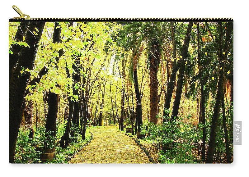 Autumn Carry-all Pouch featuring the photograph Autumn Corridor by Douglas Barnard