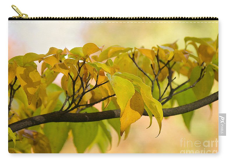 Autumn Carry-all Pouch featuring the photograph Autumn Day by Angela Doelling AD DESIGN Photo and PhotoArt