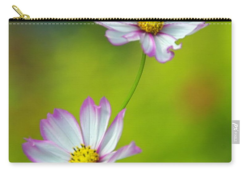 Flowers Carry-all Pouch featuring the photograph Autumn Flowers by Byron Varvarigos