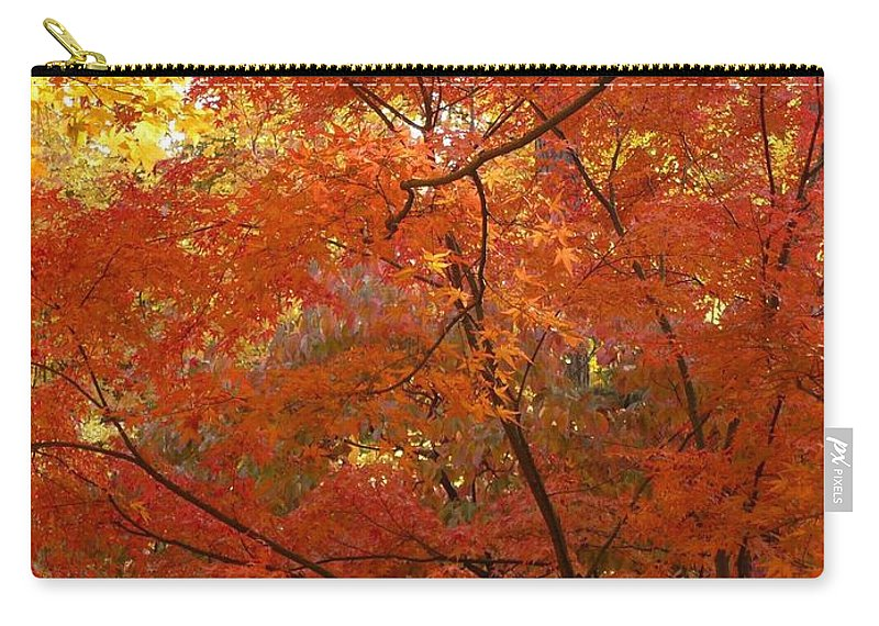 Fall Carry-all Pouch featuring the photograph Autumn Gold Poster by Carol Groenen