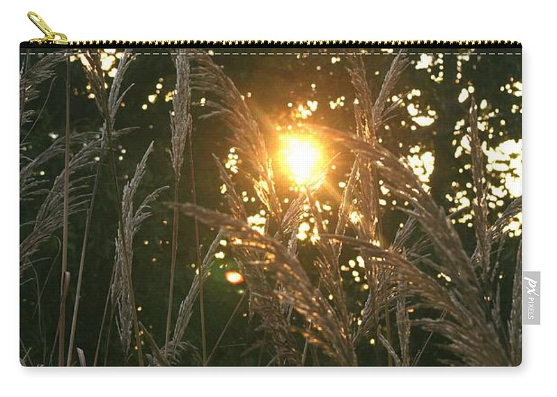 Light Carry-all Pouch featuring the photograph Autumn Grasses In The Morning by Nadine Rippelmeyer