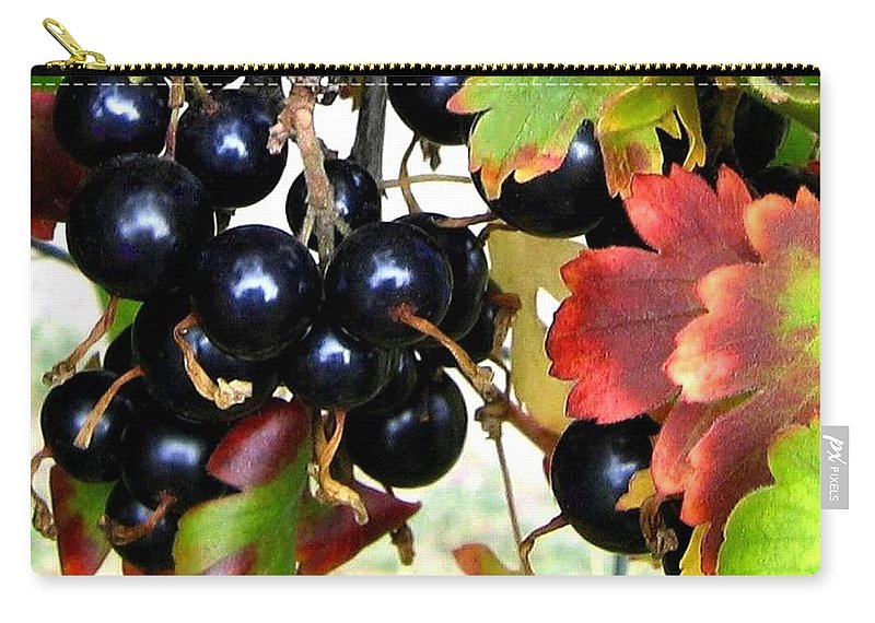 Autumn Carry-all Pouch featuring the photograph Autumn Jostaberries by Will Borden