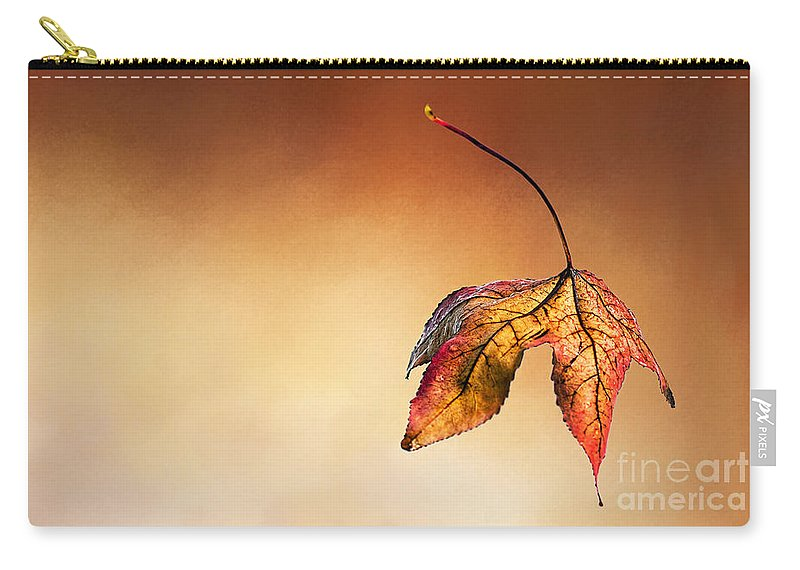 Photography Carry-all Pouch featuring the photograph Autumn Leaf Fallen by Kaye Menner