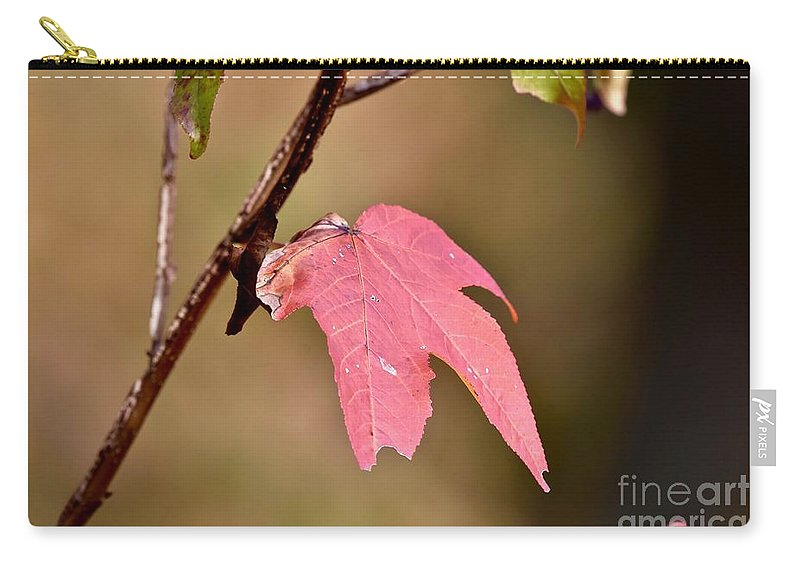 Autumn Carry-all Pouch featuring the photograph Autumn Leaf by Jeramey Lende