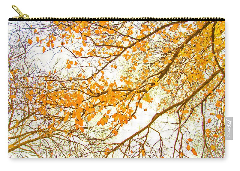 Spring Flowers Carry-all Pouch featuring the photograph Autumn Leaves by Az Jackson