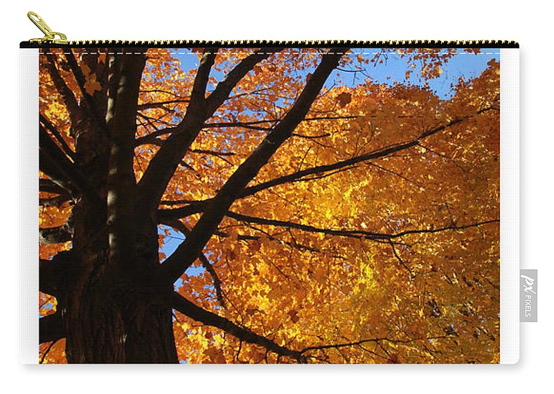 Scripture Carry-all Pouch featuring the photograph Autumn Leaves by Debbie Nobile