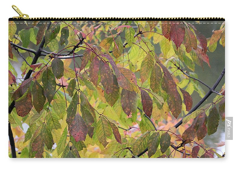 Autumn Carry-all Pouch featuring the photograph Autumn Leaves by Doris Potter