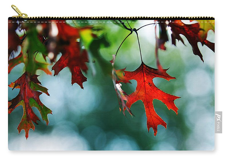 Autumn Fall Leaf Leaves Red Seasons Lone Nature Botanical Carry-all Pouch featuring the photograph Autumn Leaves by Jill Reger