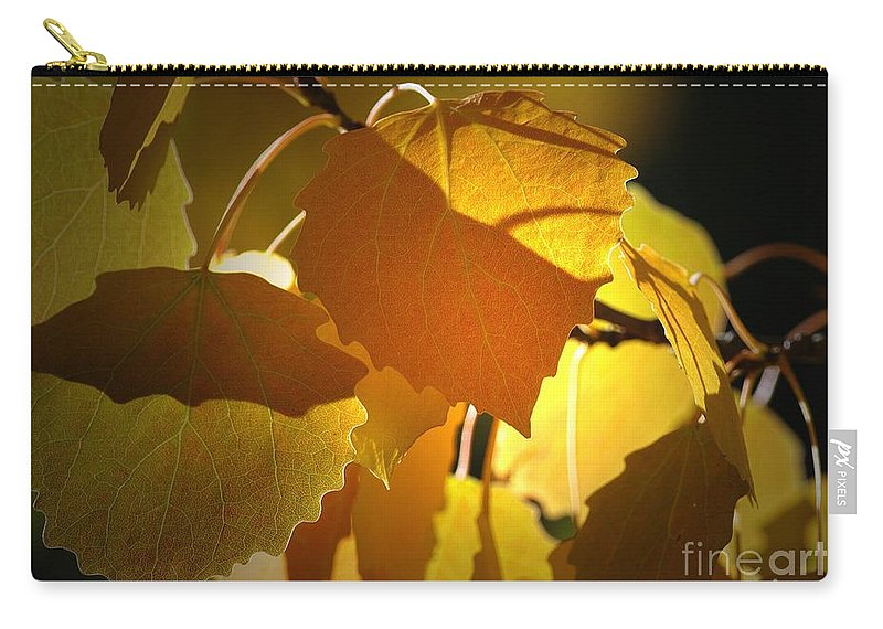 Leaves Carry-all Pouch featuring the photograph Autumn Leaves by Sharon Talson