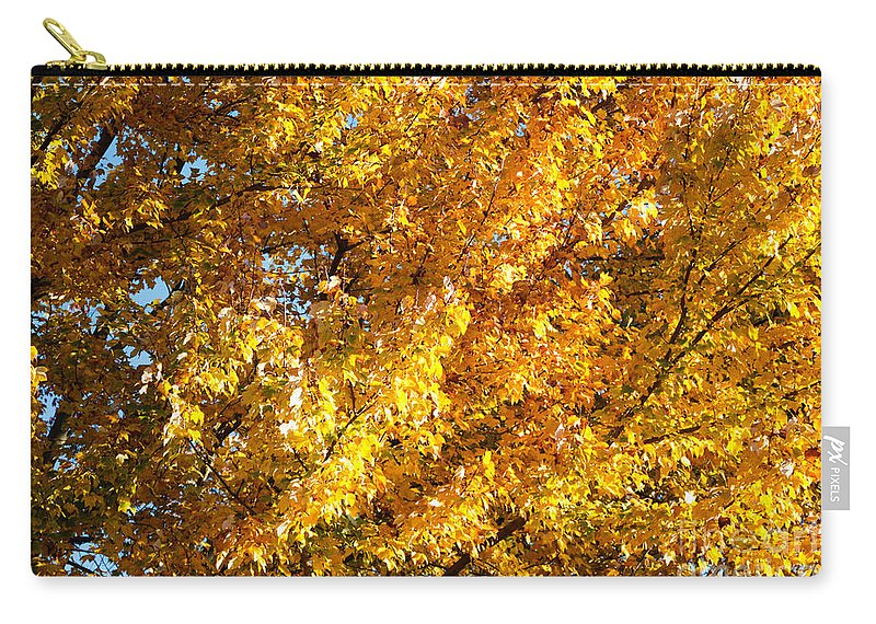 Gaithersburg Carry-all Pouch featuring the photograph Autumn Leaves by Thomas Marchessault