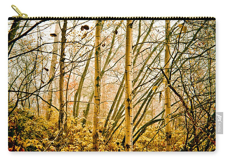 Trees Carry-all Pouch featuring the photograph autumn Lines by Maggie Terlecki